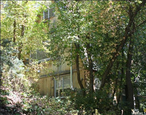 3159 E Big Pine Rd, Sundance, UT 84604 (#1746064) :: Bear Phelps Group