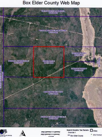 Address Not Published, Park Valley, UT 84329 (#1746215) :: Bear Phelps Group