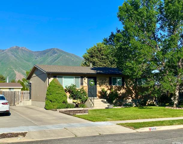 699 S 1600 E, Spanish Fork, UT 84660 (#1746398) :: The Perry Group