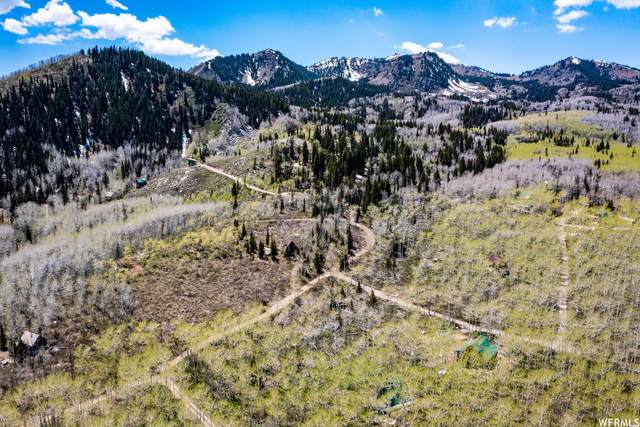 2460 W Spruce Rd #136, Midway, UT 84049 (MLS #1746627) :: High Country Properties