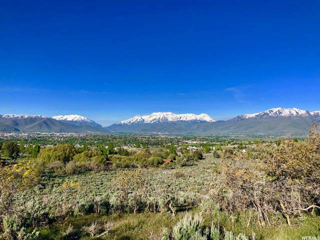 1977 E Upper Lookout Knoll Cir #369, Heber City, UT 84032 (#1746904) :: Doxey Real Estate Group