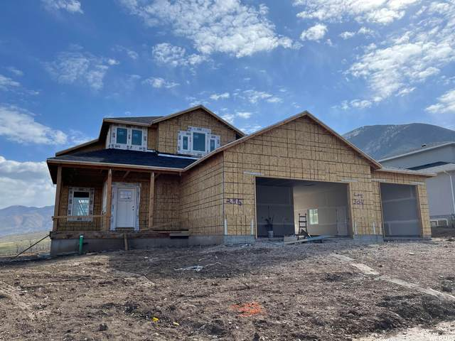 285 S Canyon Overlook Dr, Tooele, UT 84074 (#1747113) :: UVO Group | Realty One Group Signature
