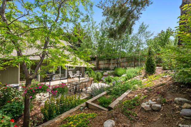 3656 E Summerhill Dr S, Cottonwood Heights, UT 84121 (#1747779) :: UVO Group | Realty One Group Signature