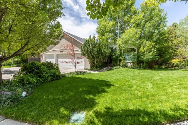 546 S Arnold Ct, Alpine, UT 84004 (#1748155) :: Berkshire Hathaway HomeServices Elite Real Estate