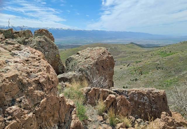 24500 N 6750 Rd E, Indianola, UT 84629 (#1748420) :: Utah Real Estate