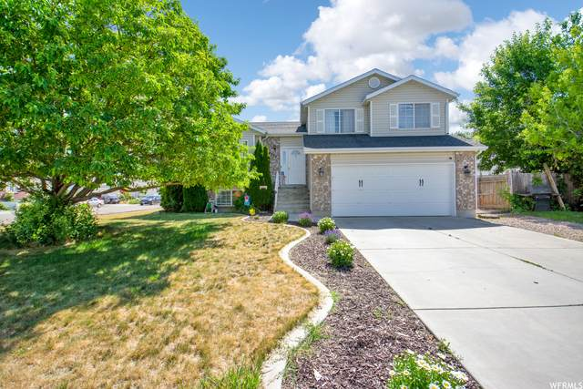 4978 S 3200 W, Roy, UT 84067 (#1748448) :: UVO Group | Realty One Group Signature