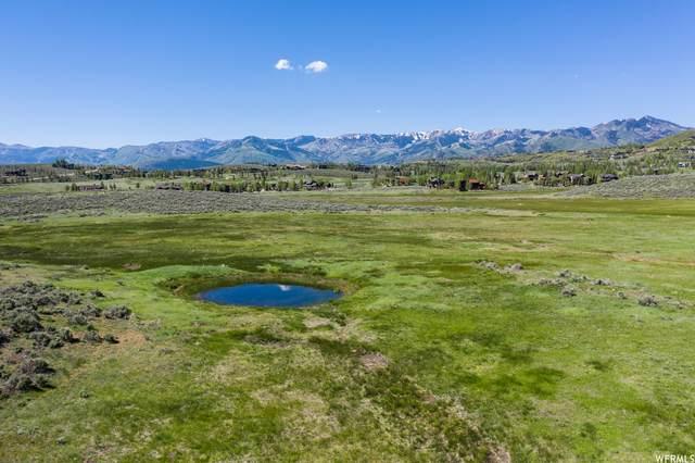 8151 N Bitner Ranch Rd, Park City, UT 84098 (#1748520) :: The Fields Team