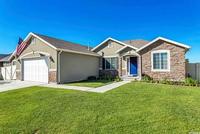 1134 E Searle Ln, Eagle Mountain, UT 84005 (#1748806) :: Gurr Real Estate