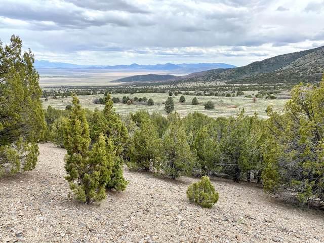 Address Not Published, Cedar Fort, UT 84013 (#1748972) :: Utah Real Estate