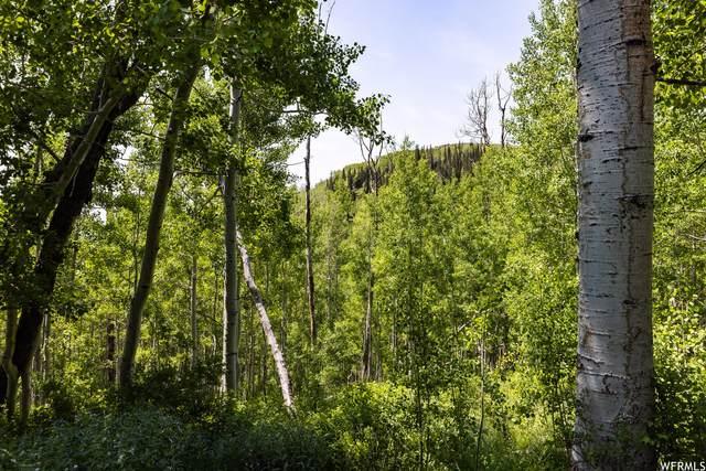 5475 N Hidden Way, Midway, UT 84049 (#1749138) :: Powder Mountain Realty