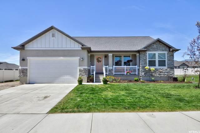 4909 N Brandon Park Dr, Eagle Mountain, UT 84005 (#1749176) :: Doxey Real Estate Group