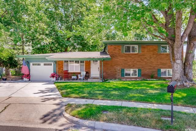 1009 E 3150 N, North Ogden, UT 84414 (#1749321) :: Berkshire Hathaway HomeServices Elite Real Estate