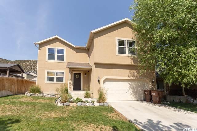 7057 Mohican Dr, Eagle Mountain, UT 84005 (#1749575) :: Utah Best Real Estate Team | Century 21 Everest