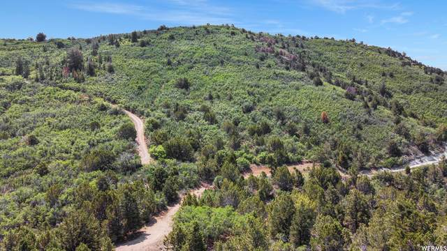 Address Not Published #483, Indianola, UT 84629 (#1749646) :: Utah Best Real Estate Team | Century 21 Everest
