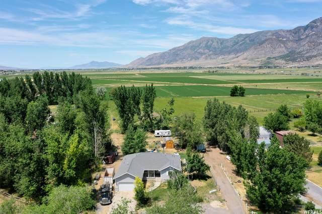 3080 W 4600 N, Brigham City, UT 84302 (#1749757) :: Powder Mountain Realty