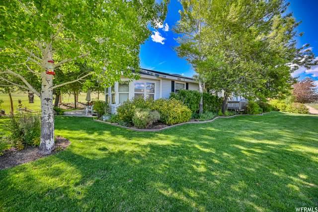 1250 S West Hoytsville Rd, Coalville, UT 84017 (MLS #1750131) :: High Country Properties