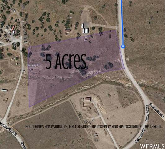 333 Oaker Hill Subdivision Phase 3 #333, Indianola, UT 84629 (#1750189) :: Colemere Realty Associates