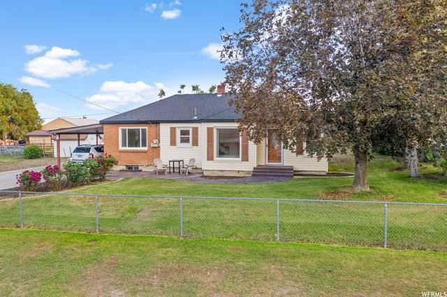 59 W 100 S, Cedar Fort, UT 84013 (#1750473) :: Utah Real Estate