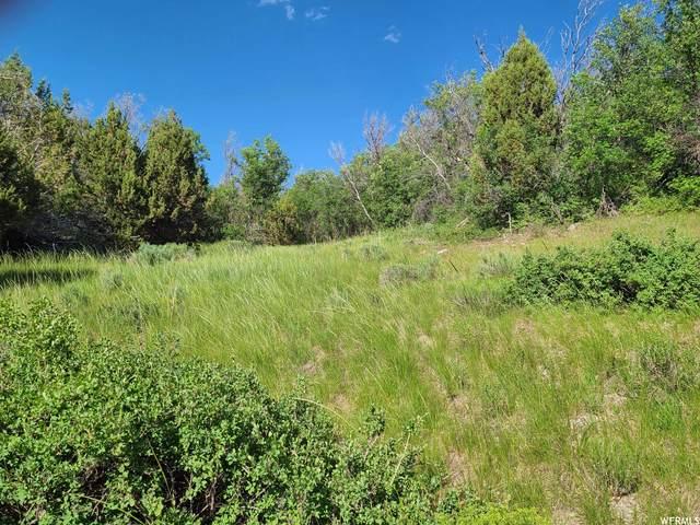 57 E High Bench Rd N #57, Fairview, UT 84629 (#1750578) :: Utah Dream Properties