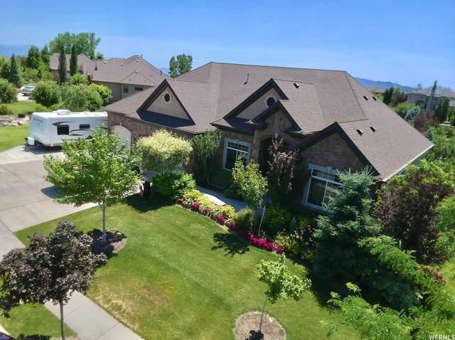 6545 W Bull River Rd, Highland, UT 84003 (#1750731) :: Utah Real Estate