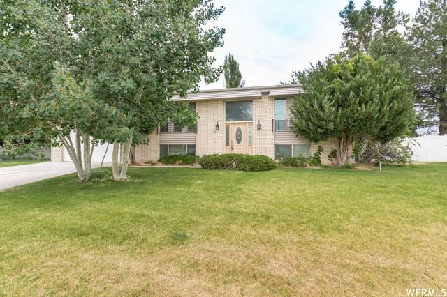 3028 W 6050 S, Roy, UT 84067 (#1751705) :: Colemere Realty Associates