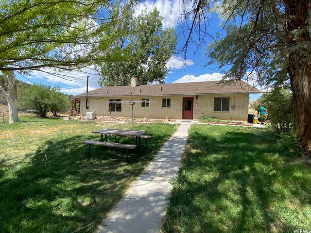 4200 W 110000 S, Mayfield, UT 84643 (MLS #1752808) :: Lookout Real Estate Group