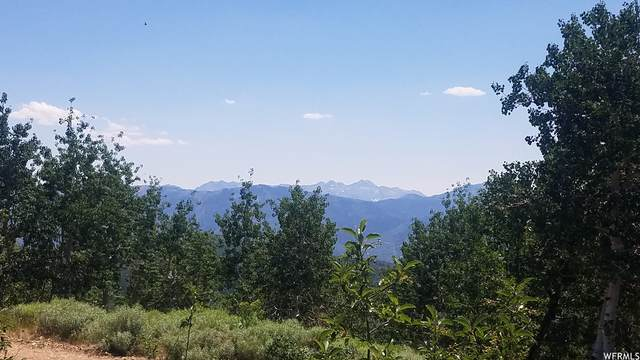 2245 Windy Ridge Dr, Wanship, UT 84017 (MLS #1753379) :: High Country Properties