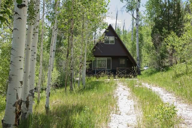 959 Cove Rd N, Salina, UT 84654 (#1753491) :: Utah Dream Properties