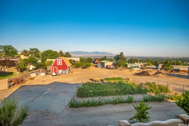 7467 S Butler Dr, Salt Lake City, UT 84121 (#1753632) :: Bustos Real Estate | Keller Williams Utah Realtors
