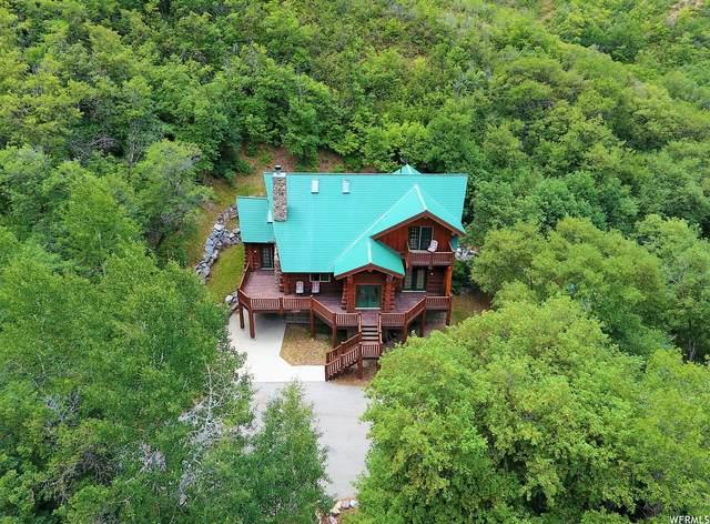 11244 S Shurtz Rd, Spanish Fork, UT 84660 (#1753638) :: Utah Real Estate