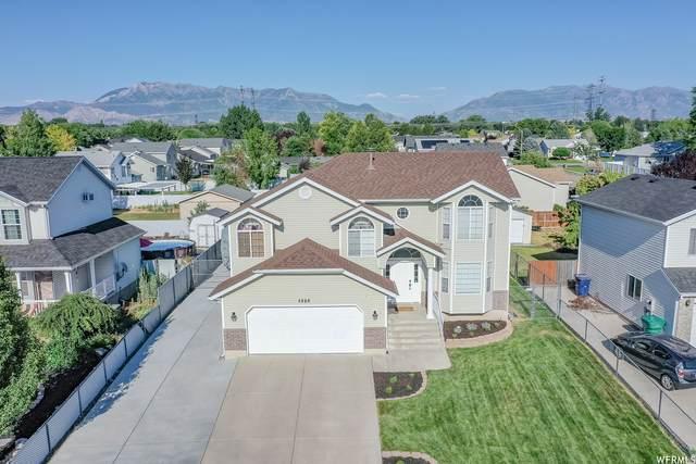 5886 S 3450 W, Roy, UT 84067 (#1753802) :: Utah Real Estate