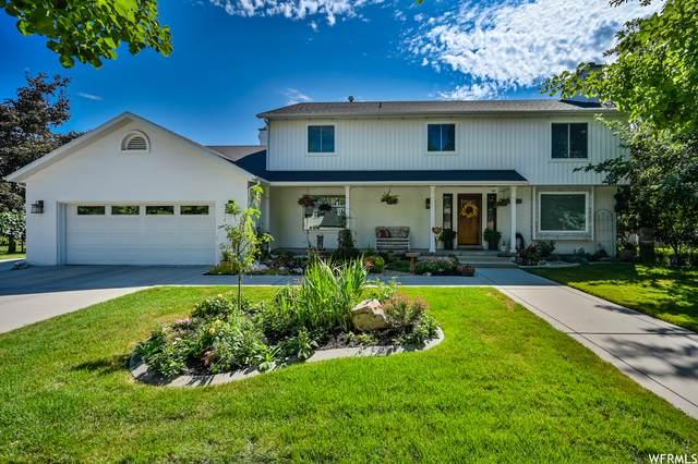 8511 S Jardim Way, Sandy, UT 84093 (#1754015) :: Utah Real Estate