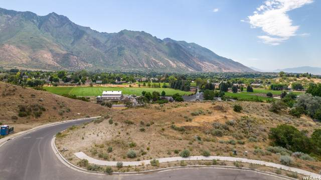 965 E Deer Crest Ln #2, Alpine, UT 84004 (#1754221) :: UVO Group | Realty One Group Signature