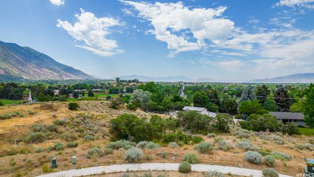 977 E Deer Crest Ln #3, Alpine, UT 84004 (#1754228) :: UVO Group | Realty One Group Signature