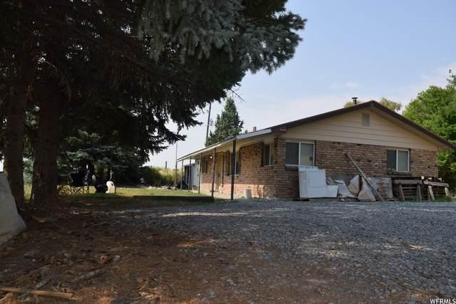 18065 N 5200 W, Garland, UT 84312 (#1754804) :: Utah Real Estate
