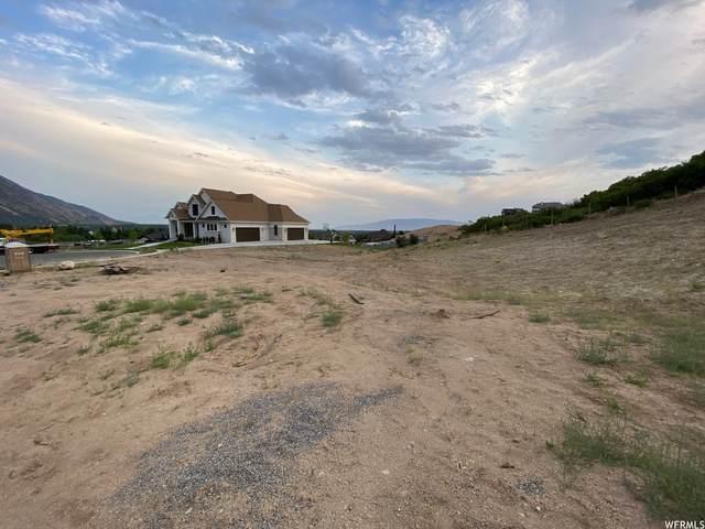 432 E Adams Cir #66, Alpine, UT 84004 (#1755124) :: Utah Real Estate