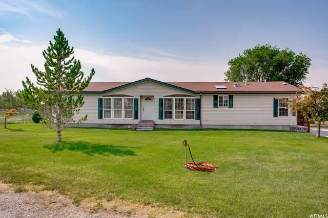 5135 W 20100 N, Plymouth, UT 84330 (#1755309) :: Utah Real Estate