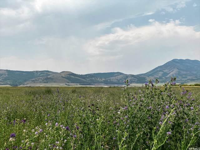 8600 N Hwy 142 W, Clarkston, UT 84305 (#1755345) :: Utah Real Estate