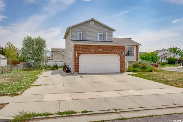 5570 S 3800 W, Roy, UT 84067 (#1755900) :: Utah Real Estate