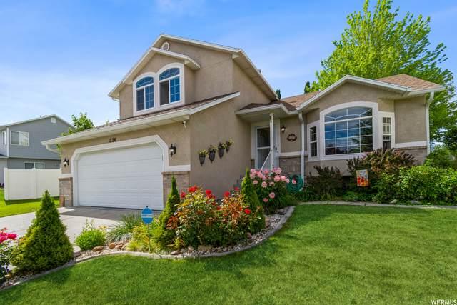 1224 E 970 N, Tooele, UT 84074 (MLS #1755907) :: Lookout Real Estate Group