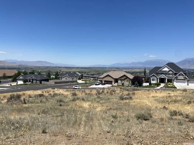 348 Ridge Dr E, Elk Ridge, UT 84651 (MLS #1755966) :: Summit Sotheby's International Realty
