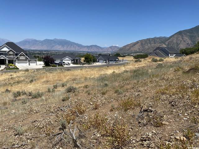 320 Ridge Dr E, Elk Ridge, UT 84651 (MLS #1755974) :: Summit Sotheby's International Realty