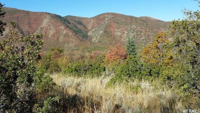 1 W 1400 S, Elk Ridge, UT 84651 (#1756121) :: Utah Best Real Estate Team | Century 21 Everest