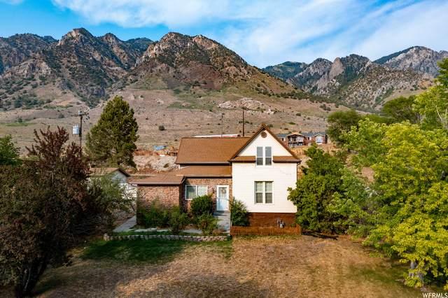 4740 N Highway 38, Brigham City, UT 84302 (MLS #1756125) :: Lookout Real Estate Group