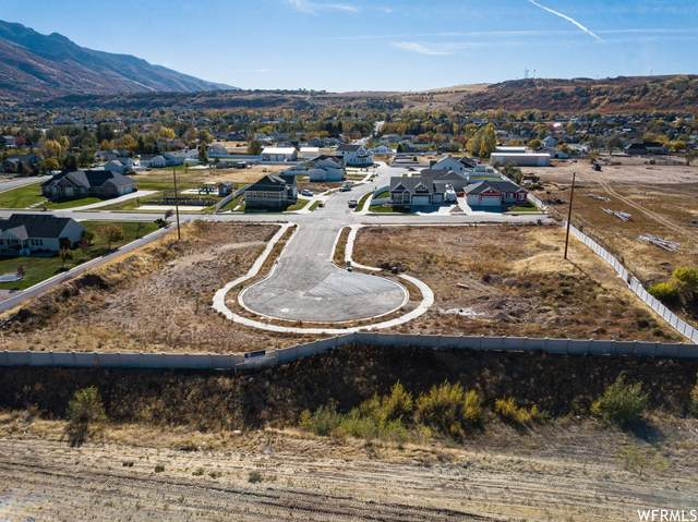 7212 S Harolds Way, South Weber, UT 84405 (#1756187) :: Colemere Realty Associates
