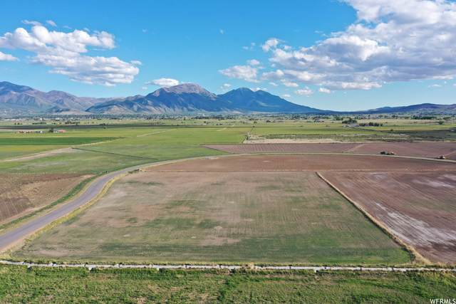 7400 S Miracle Rd W #16, Benjamin, UT 84660 (#1756192) :: The Lance Group