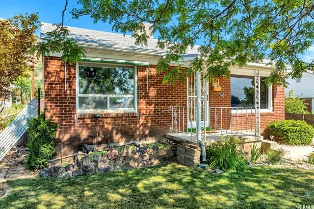 714 S Robins Ave #1400, Ogden, UT 84404 (#1756226) :: Powder Mountain Realty