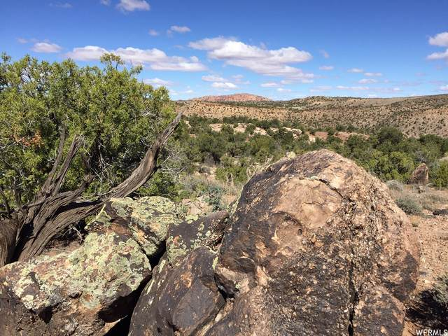 67 W Kane Canyon #16, Moab, UT 84532 (MLS #1756551) :: Lawson Real Estate Team - Engel & Völkers