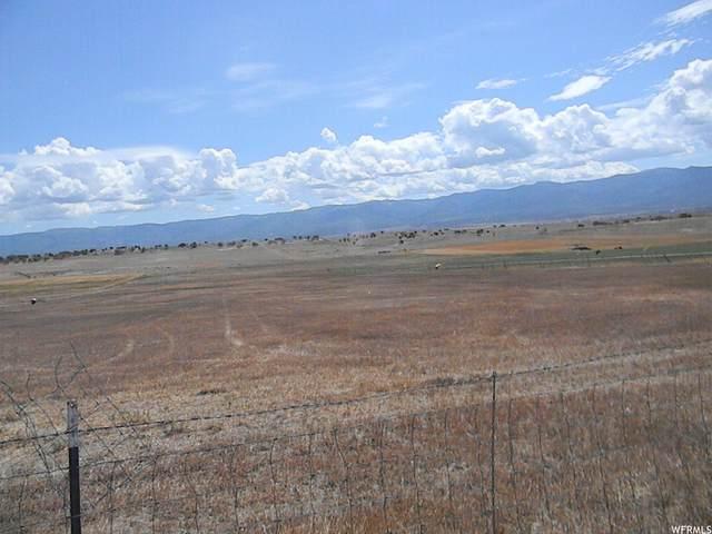 18000 N Pea Valley Rd E, Moroni, UT 84646 (#1756583) :: Utah Best Real Estate Team | Century 21 Everest