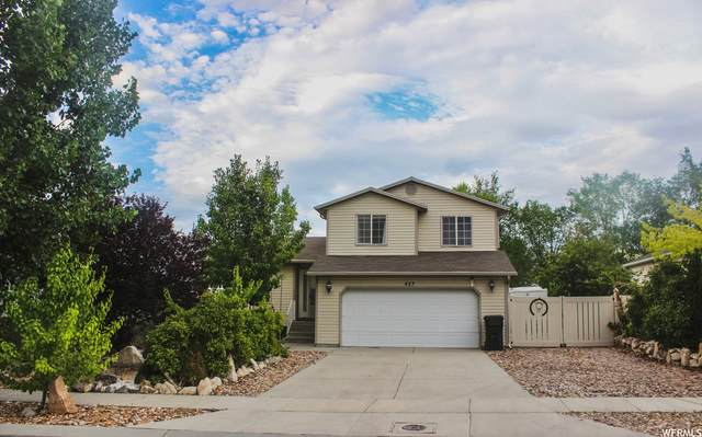 427 E Brittany Way N, Tooele, UT 84074 (#1756760) :: Colemere Realty Associates